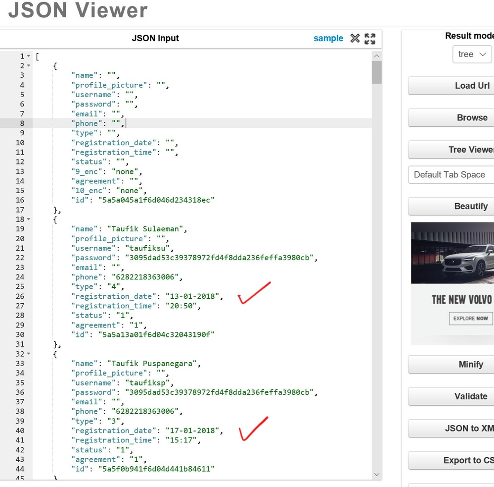 JSON Viewer shows correct Date