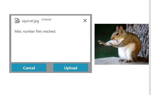 upload file to companies.JPG