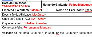 horas_docx.PNG