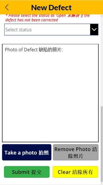 New Defect.JPG