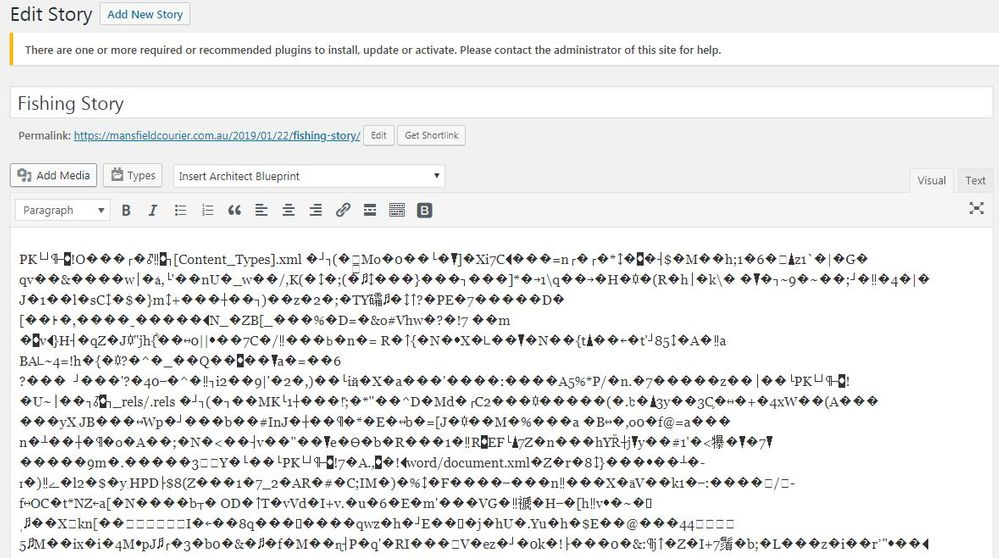 Wordpress Story.JPG
