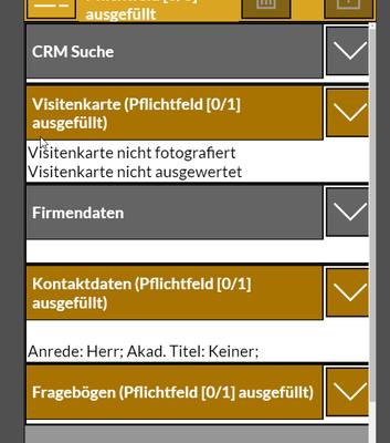 Datasourceinfo Displayname Of Custom Entity Fields